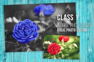 Graphic Design Course Class 1